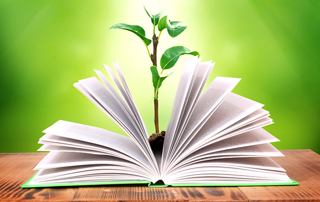 """""""Proyectos Ambientales de Educación –PRAE-"""""""