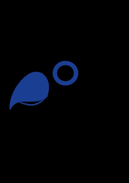 Pajaro-Paujil-Azul-V2